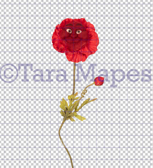 Talking Flower-  Red Happy Flower with Funny Face- Flower Overlay by Tara Mapes - Alice in Wonderland Inspired PNG - Digital Overlays by Tara Mapes Enchanted Eye Creations