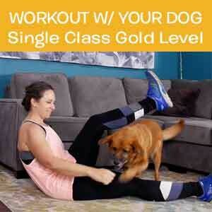 Item 02. Online Workout With Your Dog Single Class Gold Level