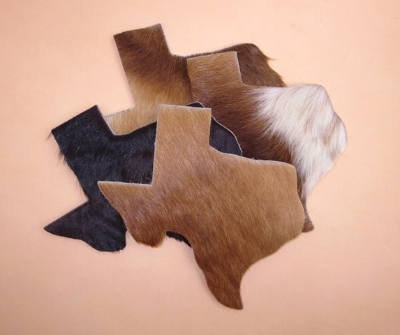 Hair on Cowhide Texas ~ TLC312