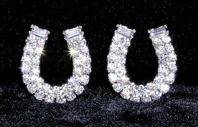 Rhinestone Horseshoe Earrings ~ W6112