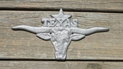 Longhorn with Texas & Star ~ DI-032