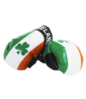 Mini Boxing Gloves Ireland
