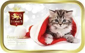 Stewarts Mint Tin Winter Kitten 40g