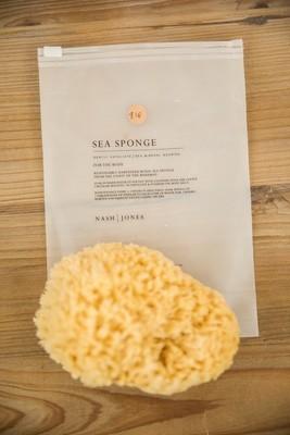 Nash and Jones - Body Sea Sponges