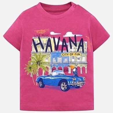 Havana T-Shirt 1026 12m