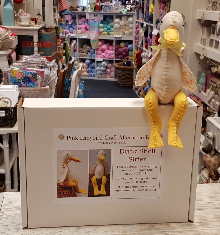 Craft Afternoon Kit - Duck Shelf Sitter