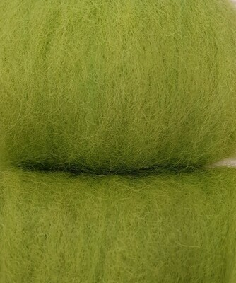 Carded Felting Wool  20 g - Cactus Green