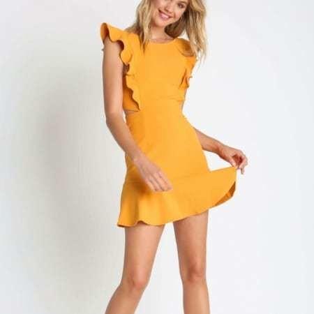 Willow Ruffled A-Line Dress