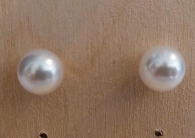 Stekertjes met witte parel - middelgroot - LIVA