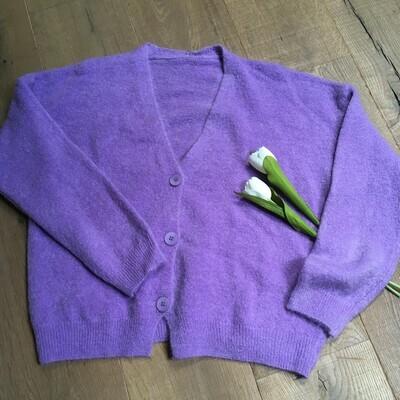 Knitwear korte vest - KLAASJE - paars