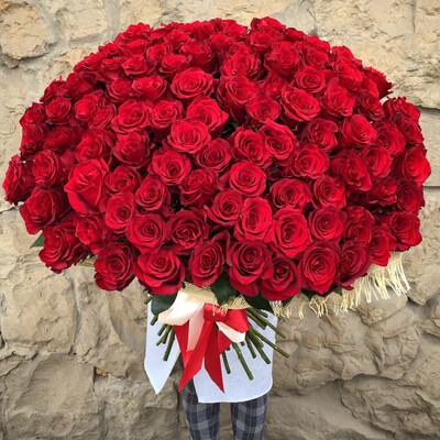 101 роза Эквадор Премиум в мешковине