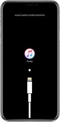 iPhone Software Update or  Restore