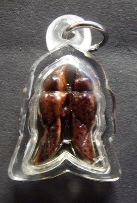 Nok Sariga Koo - Nuea Mai Payung Daeng Gae Liam Nam Man Sariga -  Himapant Golden Tongue Celestial Magpie - Hand Carved Magical Wood in Sariga Charm Oil - Ajarn Suntorn Phueak Tiang