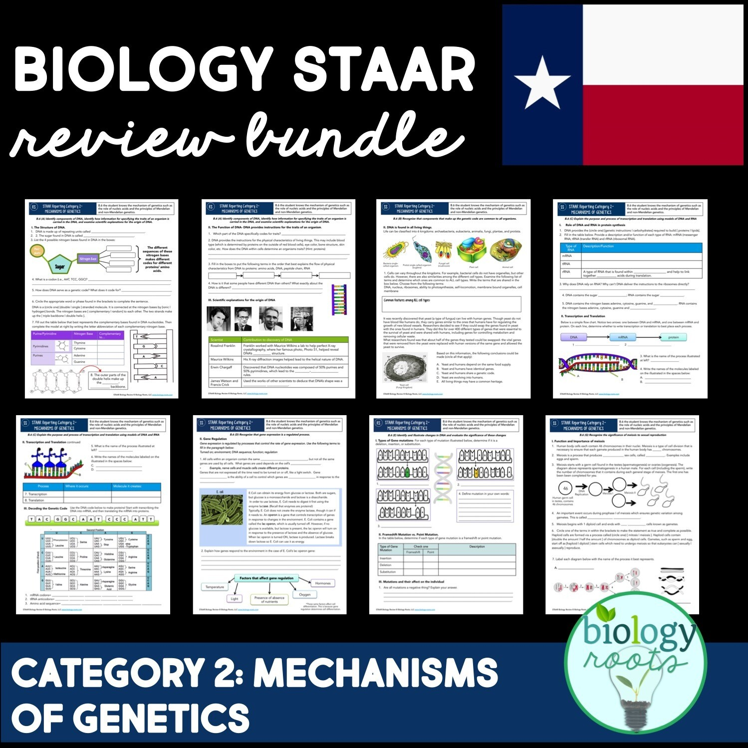 STAAR Biology Review Reporting Category 2