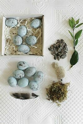 Ceramic Robins Egg Set of 12