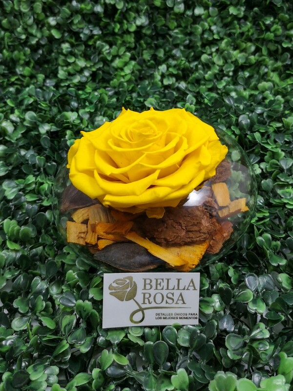 Rosa Preservada Amarilla en Base de Vidrio