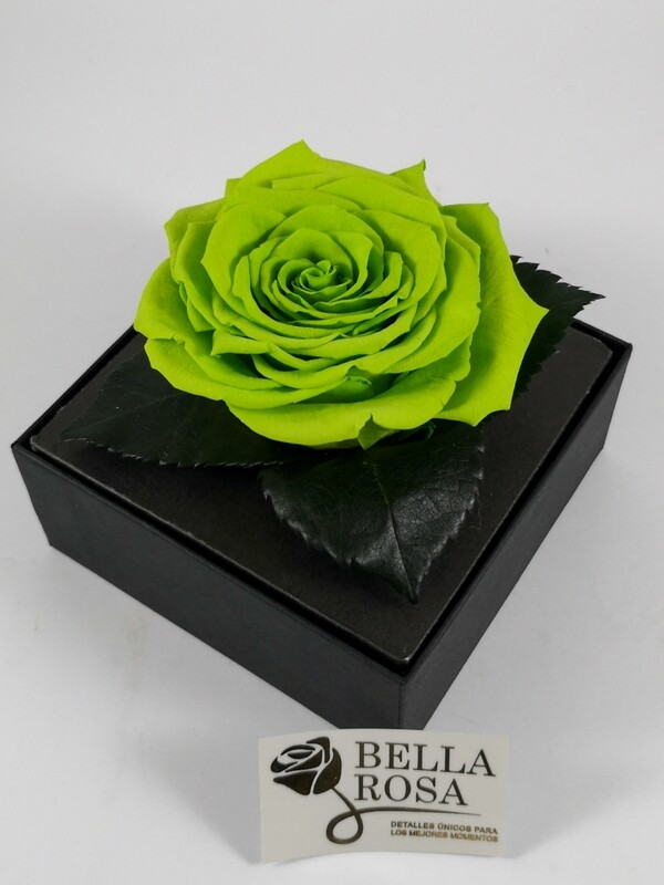 Rosa Preservada Verde Caja Acrílica
