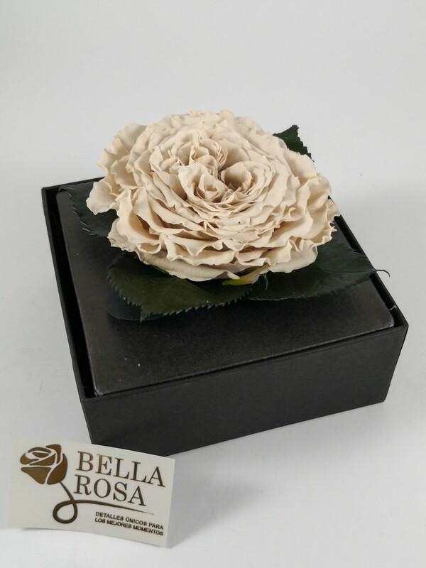 Rosa Preservada Carmen Blanca Caja Acrílica