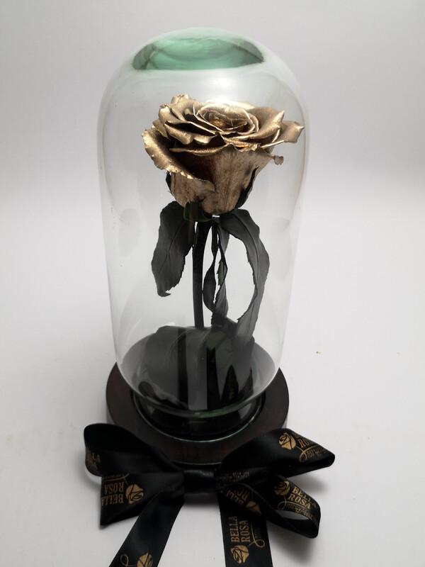 Cúpula de vidrio, 22 cm de alto, rosa natural preservada