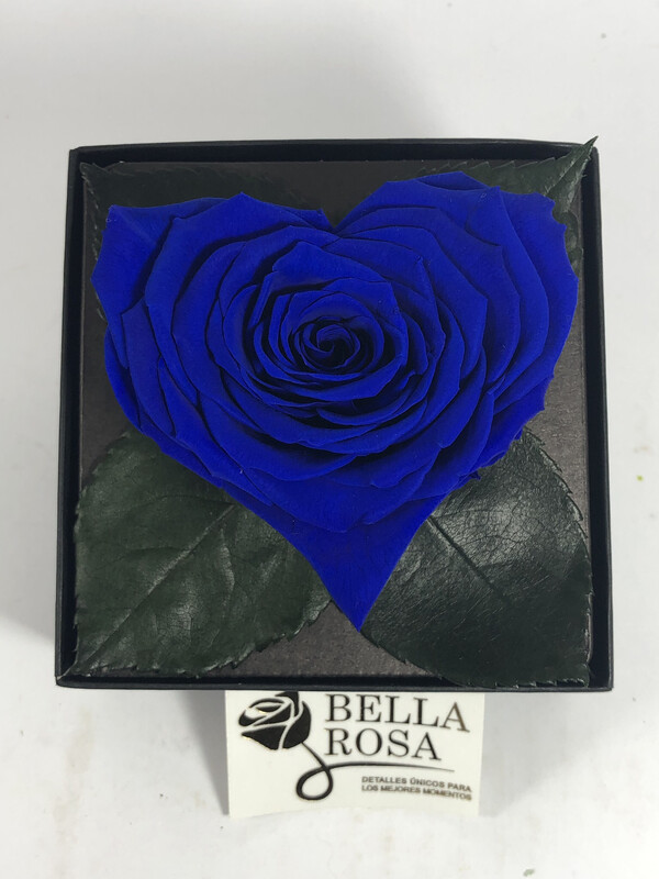 GB3 blue 03 C
