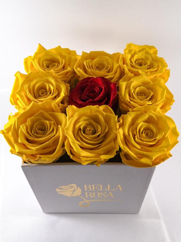 Caja con 9 rosas preservadas