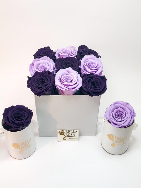 Caja con 9 rosas preservadas , diferentes colores
