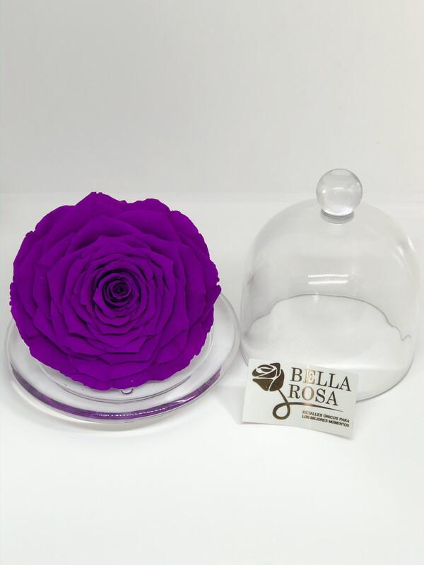 Mini cúpula de cristal con rosa preservada XXl