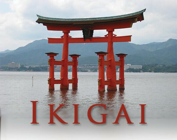 IKIGAI Coffee (Infused with Hemp Oil CBD) With Geisha Beans,
