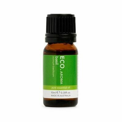 ECO. Aroma Basil 10mL