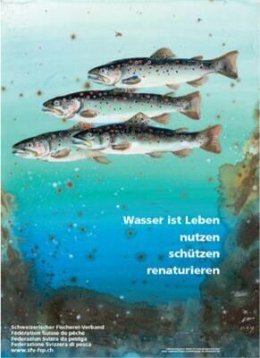 Poster Hans Erni