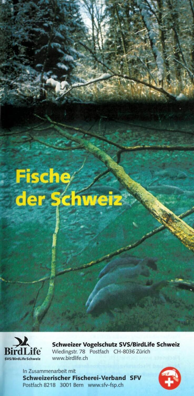 """05_Broschüre """"Fische der Schweiz"""""""