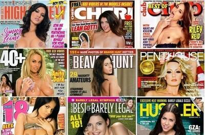 XXX Adult Magazines Grab Bag (10 Issues)