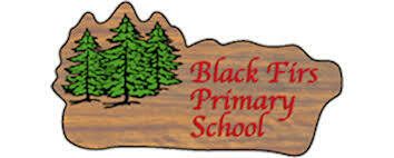 Black Firs Primary School, Cheshire - Autumn 2 2019 - Wednesday