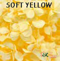 Andes Ajisai / Soft Yellow