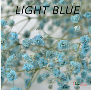 Gypsophila / Light Blue