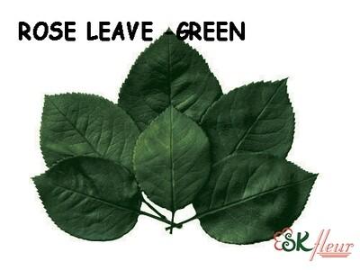 Rose Leaf in Box / Green