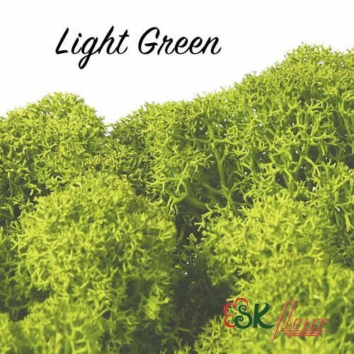Moss/ Light Green