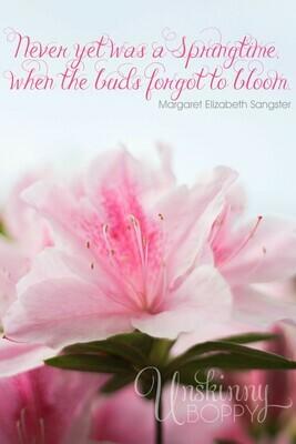 Pink Azaleas in the Springtime Free Printable Quote