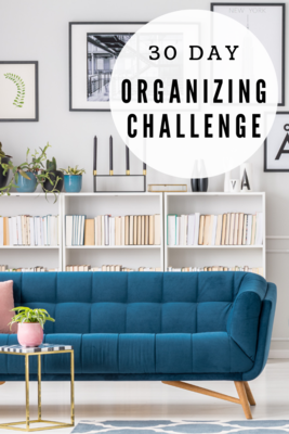 30 Day Organization Challenge