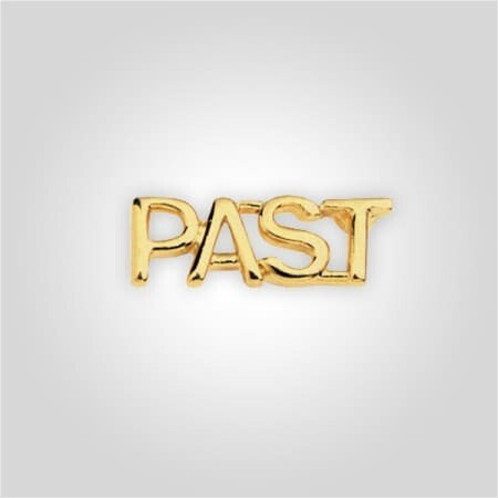 Cap Bar Pin - Past