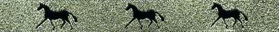 Horse Binding- Gold/Black Horse