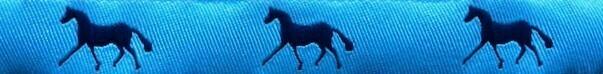 Horse Binding- Sky/Navy Horse