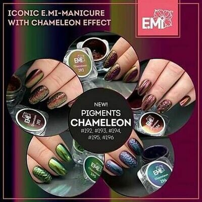 Set of 5 Pigment Chameleon #192-196, 0,5 g.