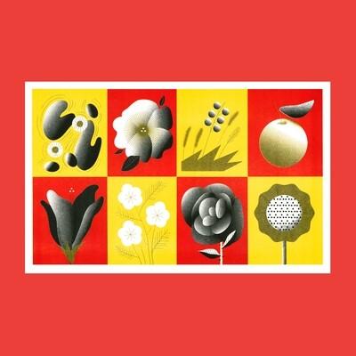 Постер «Цветы и плоды»