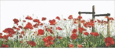 Thea Gouverneur Poppies (546A)
