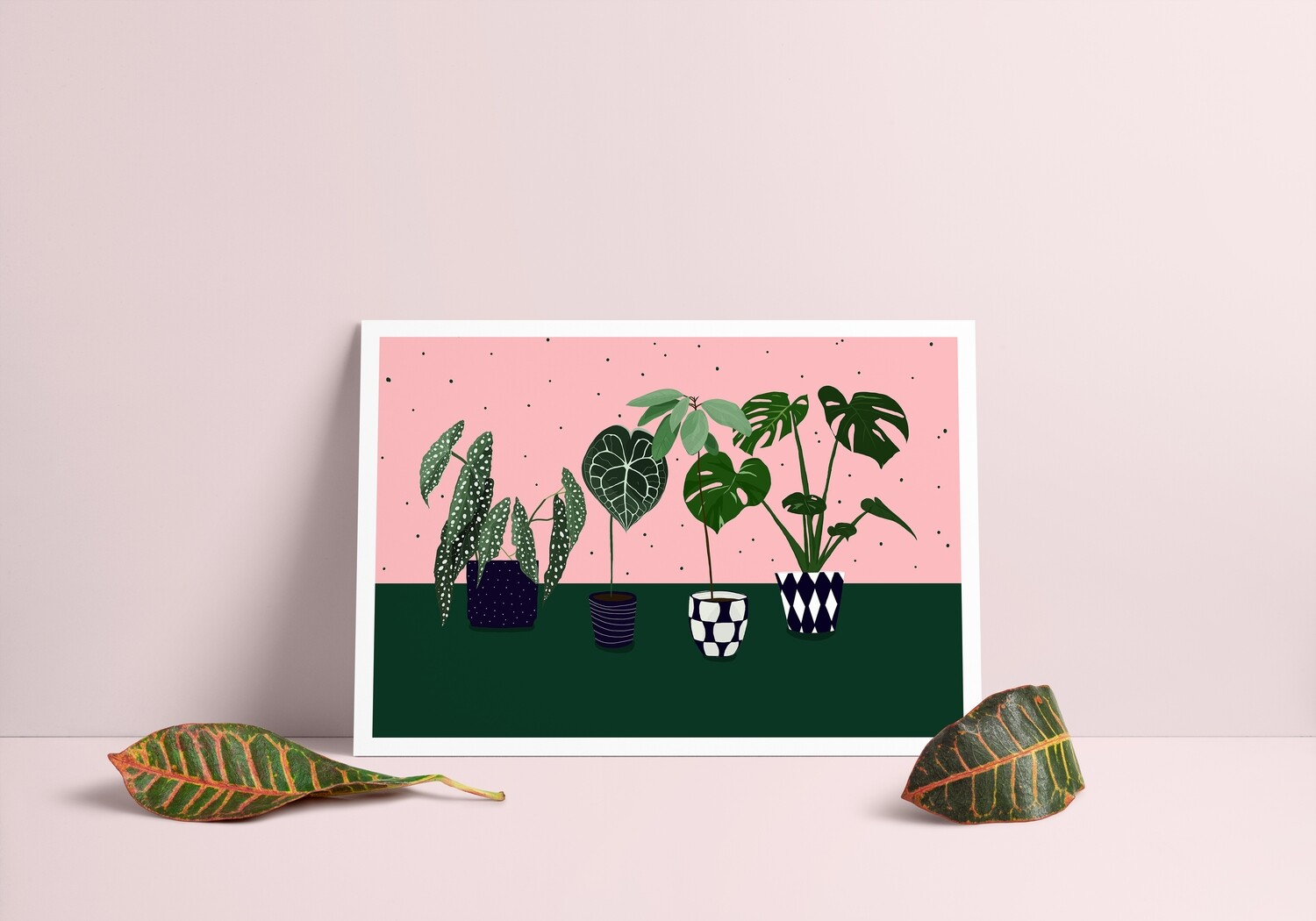 My Fabulous Plant Collection (A4 Poster)