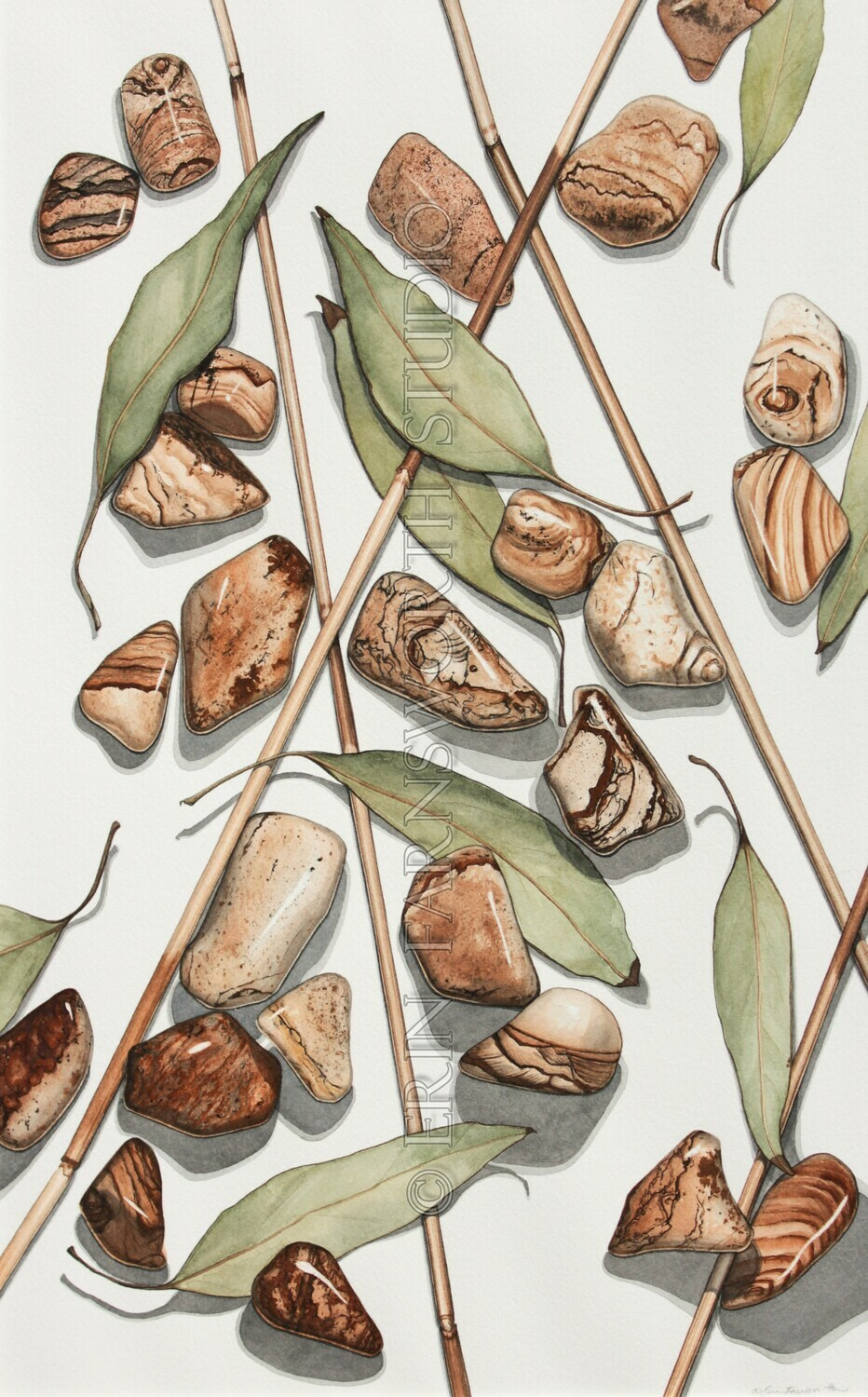 """""""Reeds, Leaves and Picture Jasper"""" 11x17 limited edition print"""
