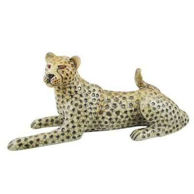 Cheetah lying