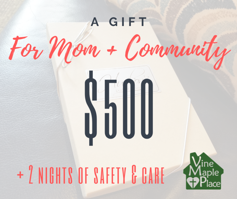 $500 Gift Certificate - 2 Nights of Safety!