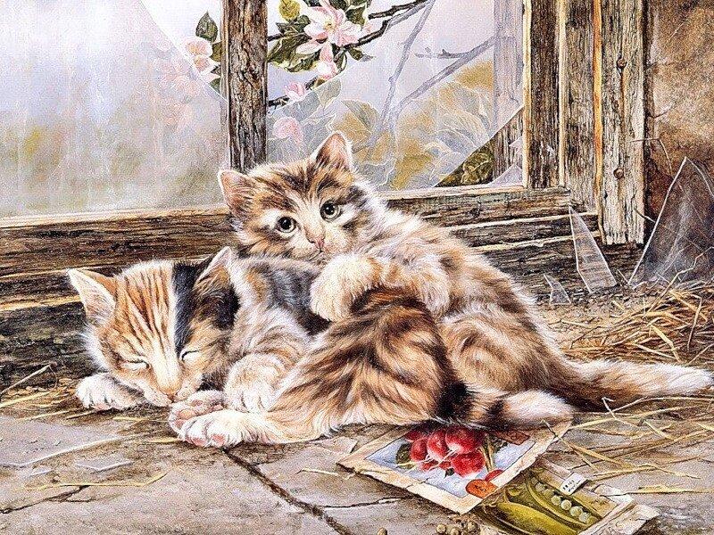 Картина по номерам 40х50 - Котята